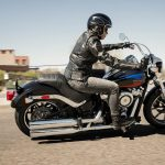 20-softail-low-rider-gallery-1