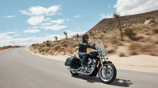 20-sportster-superlow1200t-hdi-gallery-1
